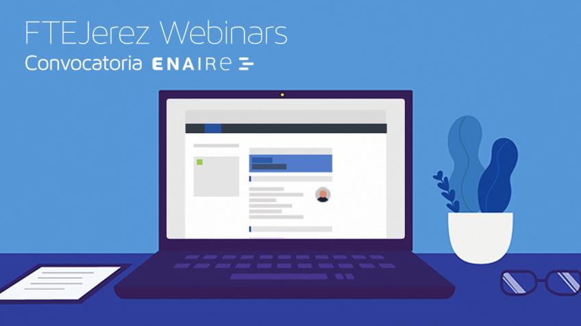 ENAIRE online seminar
